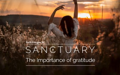 Rebalance from the mind outwards – Gratitude